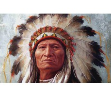 Почему у индейцев не растет борода?